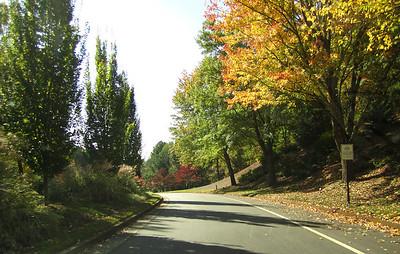 Horseshoe Bend Roswell GA Neighborhood (4)