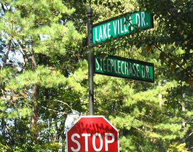 Lake Villas Horseshoe Bend Roswell GA (8)