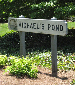 Michaels's Pond Roswell GA (6)