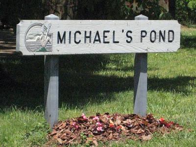 Michaels's Pond Roswell GA (5)