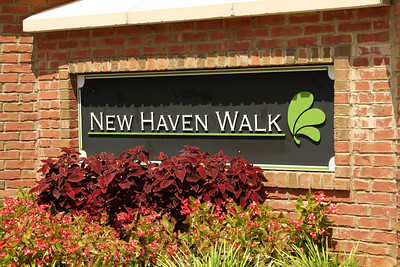 New Haven Walk Townhomes Roswell (9)