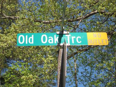 Old Oak Common Roswell GA (1)