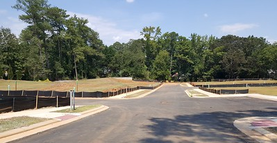 The Park At Historic Roswell Townhome Community (1)