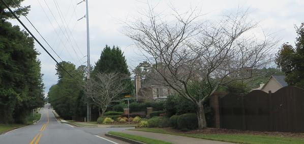 Summerwood Roswell GA (1)
