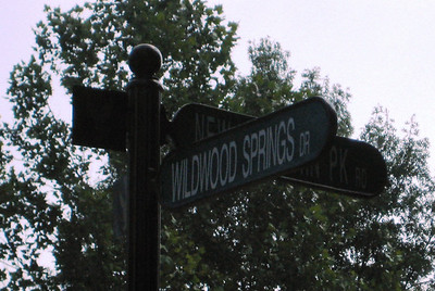Wildwood Springs Along Mountain Park Road Roswell GA (7)