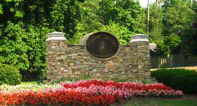Willow Springs Roswell GA Community (2)