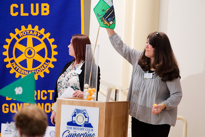 Rotary Lunch 2018-04-04
