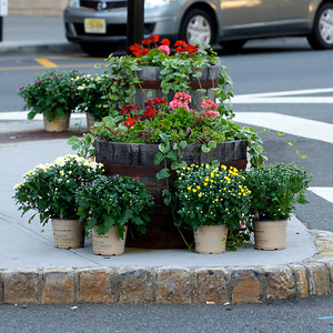 13_09_18 - Fall Barrel Planting