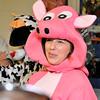 Parole Pig & Cow Enter