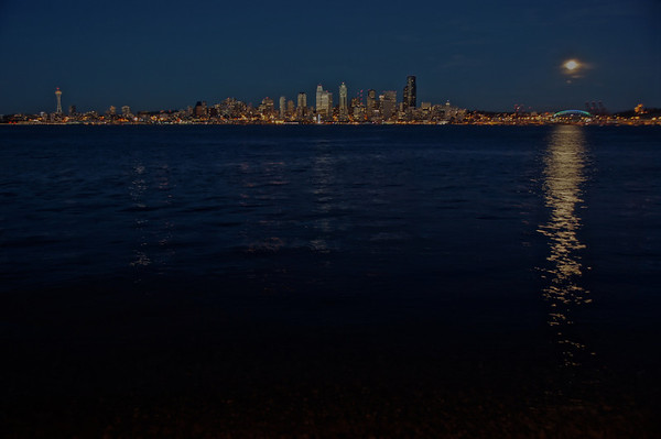 Seattle Skyline 12