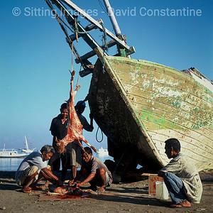Goat & Boat – Dili, Timor Leste. August 2005