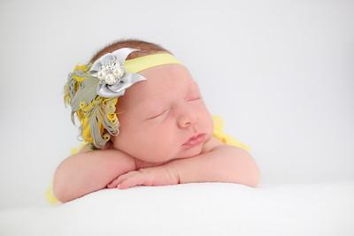 Rothrock Newborn Session