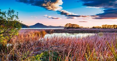 Turangi , Lake Taupo, New Zealand at dawn
