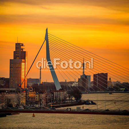 Erasmusbrug en Willemsbrug in het licht van ondergaande zon-Fotograaf Rogier Bos