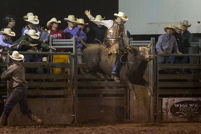 Dielco Crane's Championship Bull Riding
