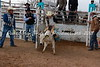 Calf Riding 2-12-12 (8)