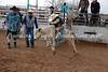 Calf Riding 2-12-12 (9)