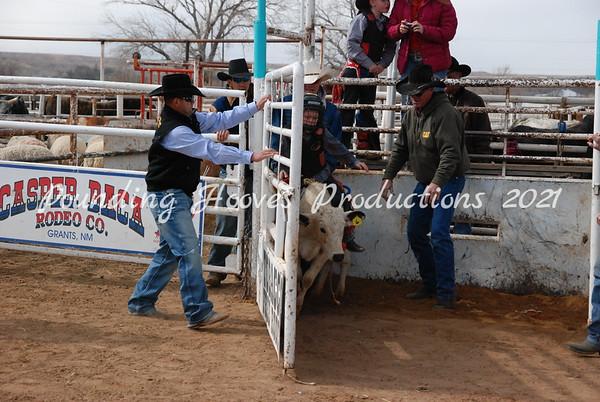 Calf Riding Sun 2-12-12