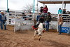 Calf Riding 2-12-12 (4)