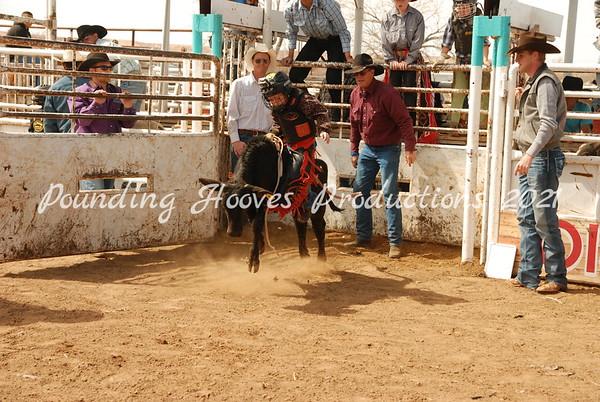 Calf Riding Sun 3-11-12