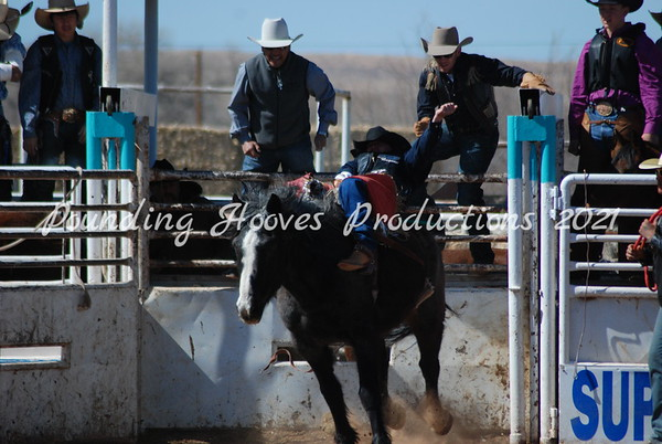 Horses and Broncs Sat 3-3-12