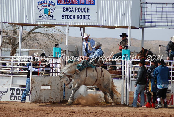 Horses and Broncs Sun 2-12-12