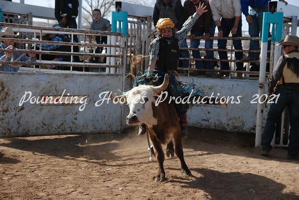 Steer Riding Sun 3-4-12