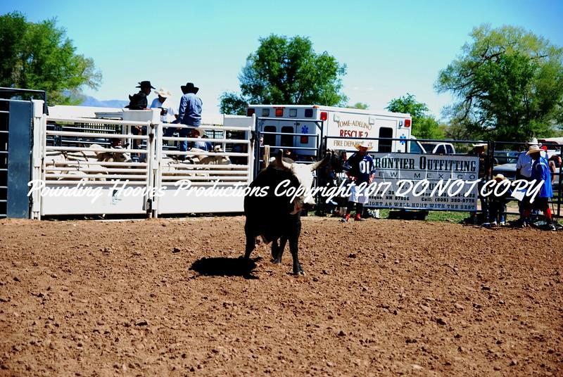 Open Bulls 042112_(0)