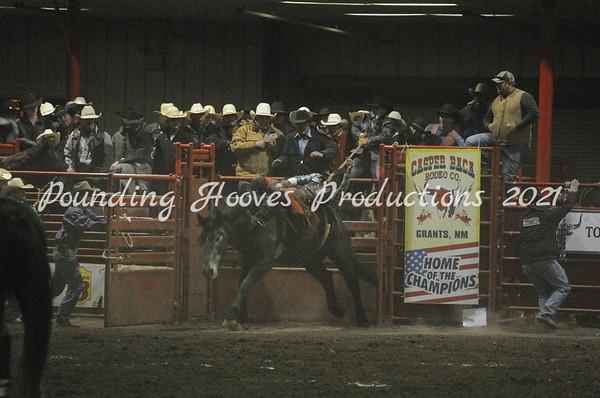 1-5-13 Bareback Horses