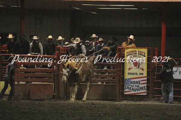 1-5-13 Saddle Broncs