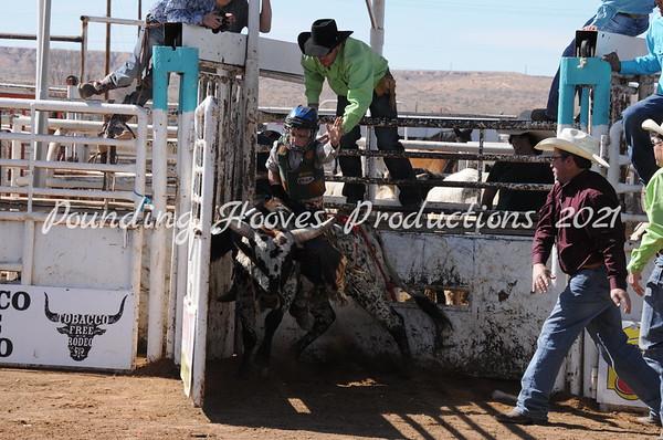 3-2-13 Sat Steers