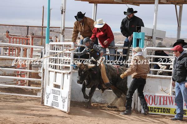2-9-13 Sat Steers