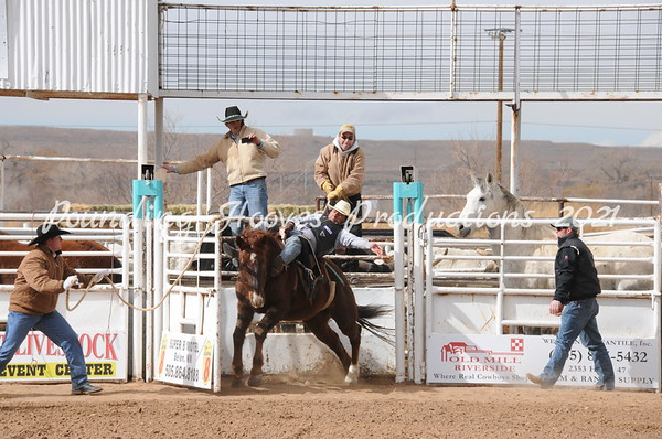 2-9-13 Sat Bareback Horses