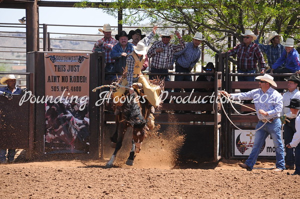 Saddle Broncs First Section