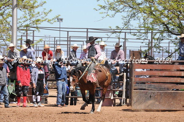 Saddle Broncs Second Section