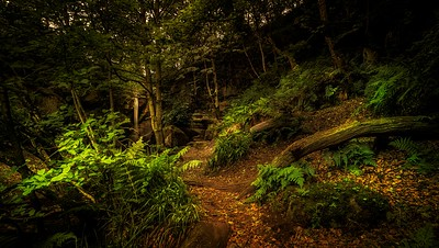 The path to Roughting Linn Waterfall.