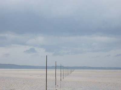 Line of marker posts for those who dare to walk to Holy Island
