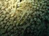 09-07-23-12-03-50_st_web