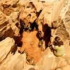 10-12-04-10-23-29_20D_web