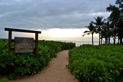 The Sheraton's beach