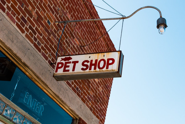 Galena Pet Shop Route 66