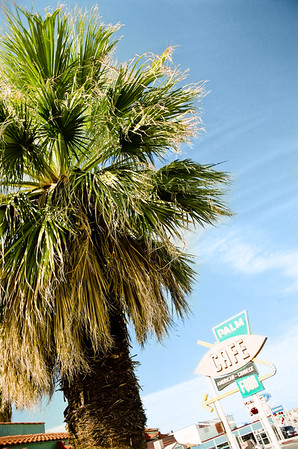 Two Palms 43333