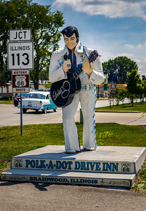 Elvis at the Polk-A-Dot Drive Inn