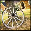 Wheel of The Wagon Wheel