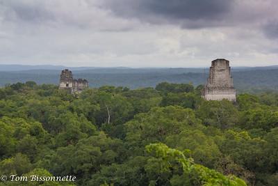 Tikal Overlook