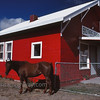 Little Red School House<br /> Brothers, Oregon<br /> <br /> © jan albers | all rights reserved