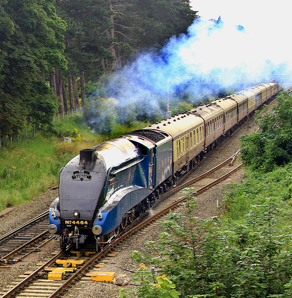 A4 pacific number 4464 'Bittern', loking good in LNER garter blue with wheel valances in place, approaches Bathampton Junction with a Cathedrals Express returning to Victoria on 13 August, 2012.