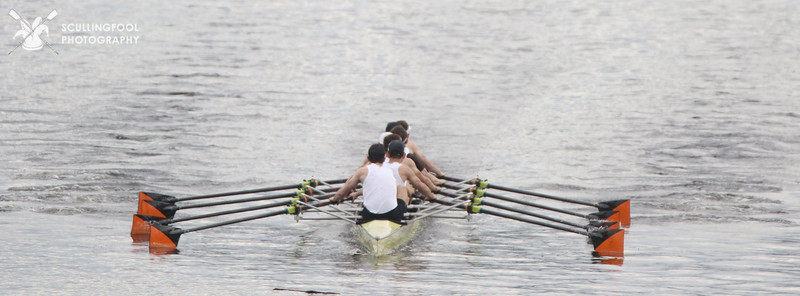 Harvard, Yale, Princeton Lightweight Men