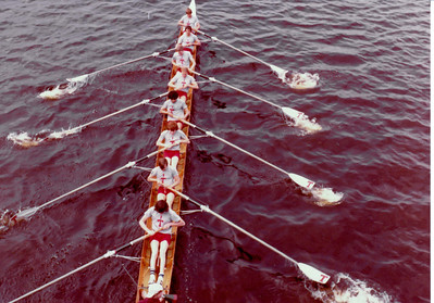 MIT/Harvard/Dartmouth race in 1981.  Freshman ltwt 8.