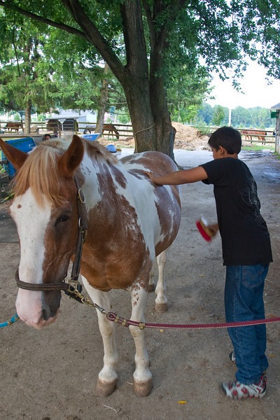 Sabir brushes his horse before riding at South 40 Farm.